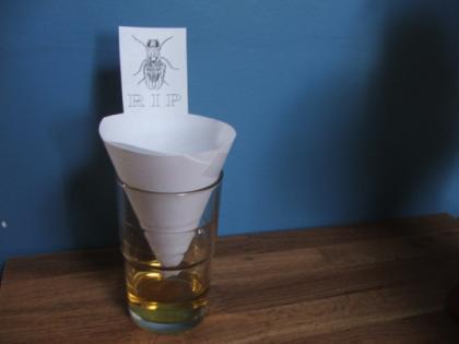 Como eliminar los insectos de casa - Eliminar insectos en casa ...