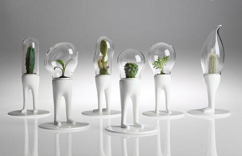 Macetas modernas para cactus - Maceteros modernos de interior ...