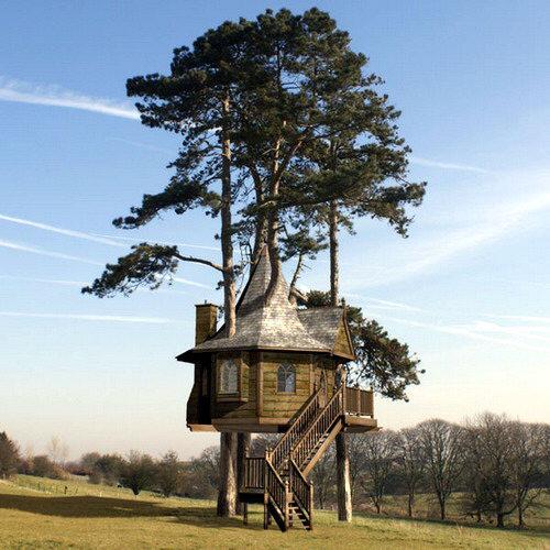 montarse una casa de madera en un rbol puede ser muy entretenido y divertido a continuacin te damos algunas ideas de casasrbol totalmente equipadas y