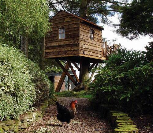 Casas rbol de madera - Casa en el arbol ...