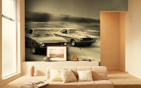 murales para las paredes
