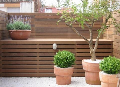 Preparar el transporte de plantas for Arboles enanos para jardin
