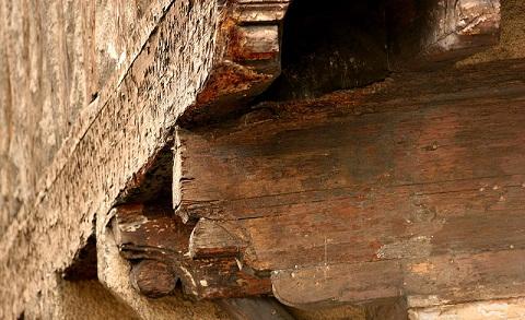 Tratamiento contra polillas o algavaros - Como eliminar la polilla de la madera ...