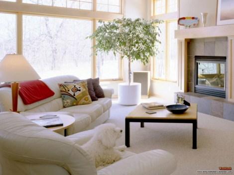 interiores modernos 61 min Fotos de interiores modernos decorados