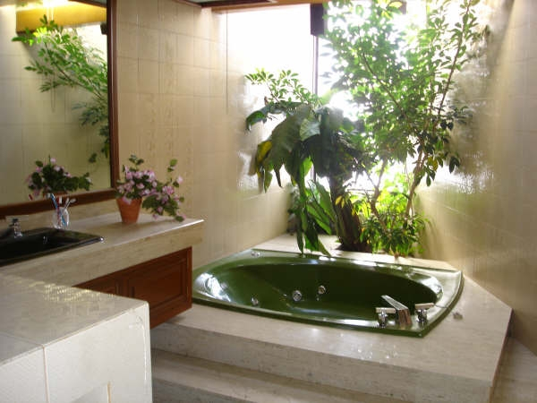 Ideas Para Decorar El Baño De Mi Casa:Bathroom with Plants