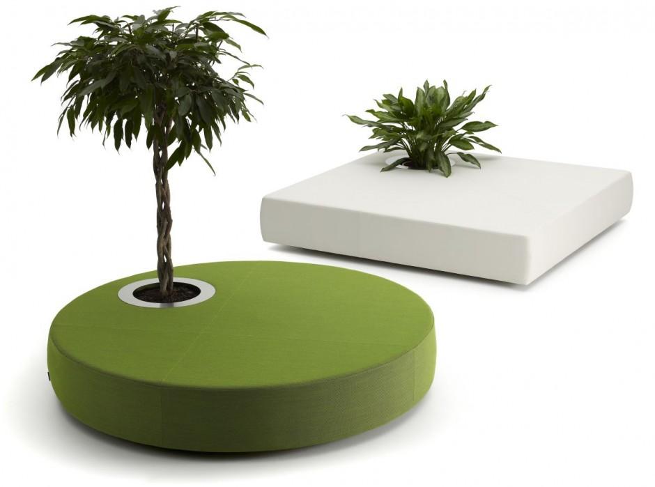 oasis 1 Cojines verdes con plantas