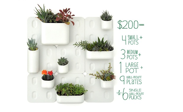 urbio a vertical garden at home