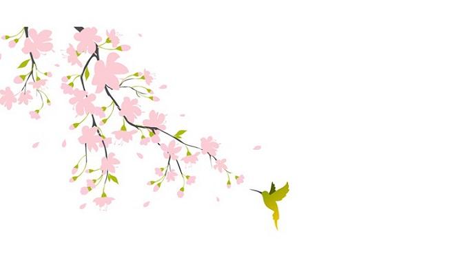 Vinilos De Flores Para Alegrar Tu Casa: Vinilos De Flores