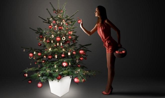Maceta iluminada para el rbol de navidad for Arboles para macetas de exterior