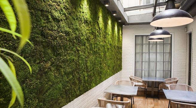 muro2 Jardines verticales para la pared