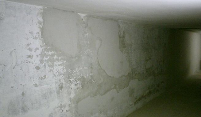 Tipos de humedad en las paredes - Humedad en la pared ...