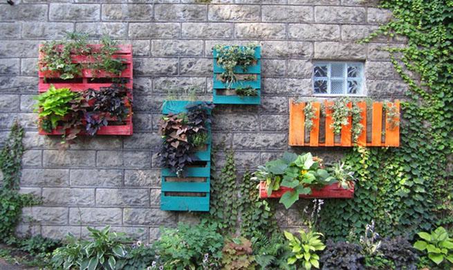 Como disear un jardin grande el bilogo y experto en - Como hacer un jardin bonito ...