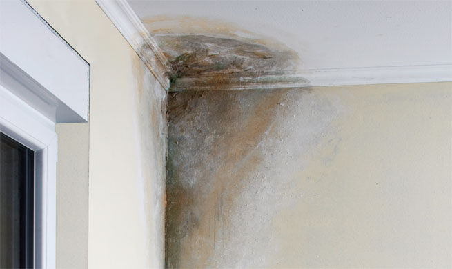 Eliminar humedades en la casa - Como eliminar la humedad de la pared ...
