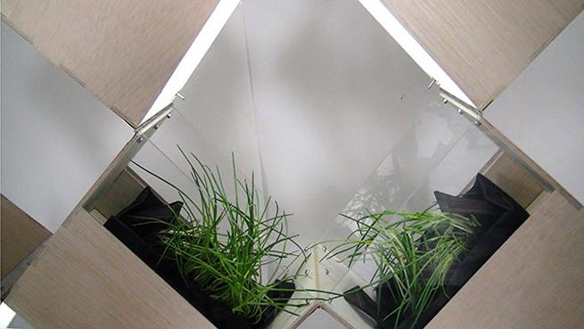 Separar espacios con jardines interiores for Modelos de jardines interiores