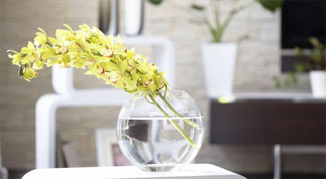Ideas F 225 Ciles Para Decorar Con Flores