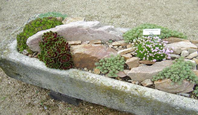 Jardines de rocalla en cualquier espacio for Jardines con madera y piedra
