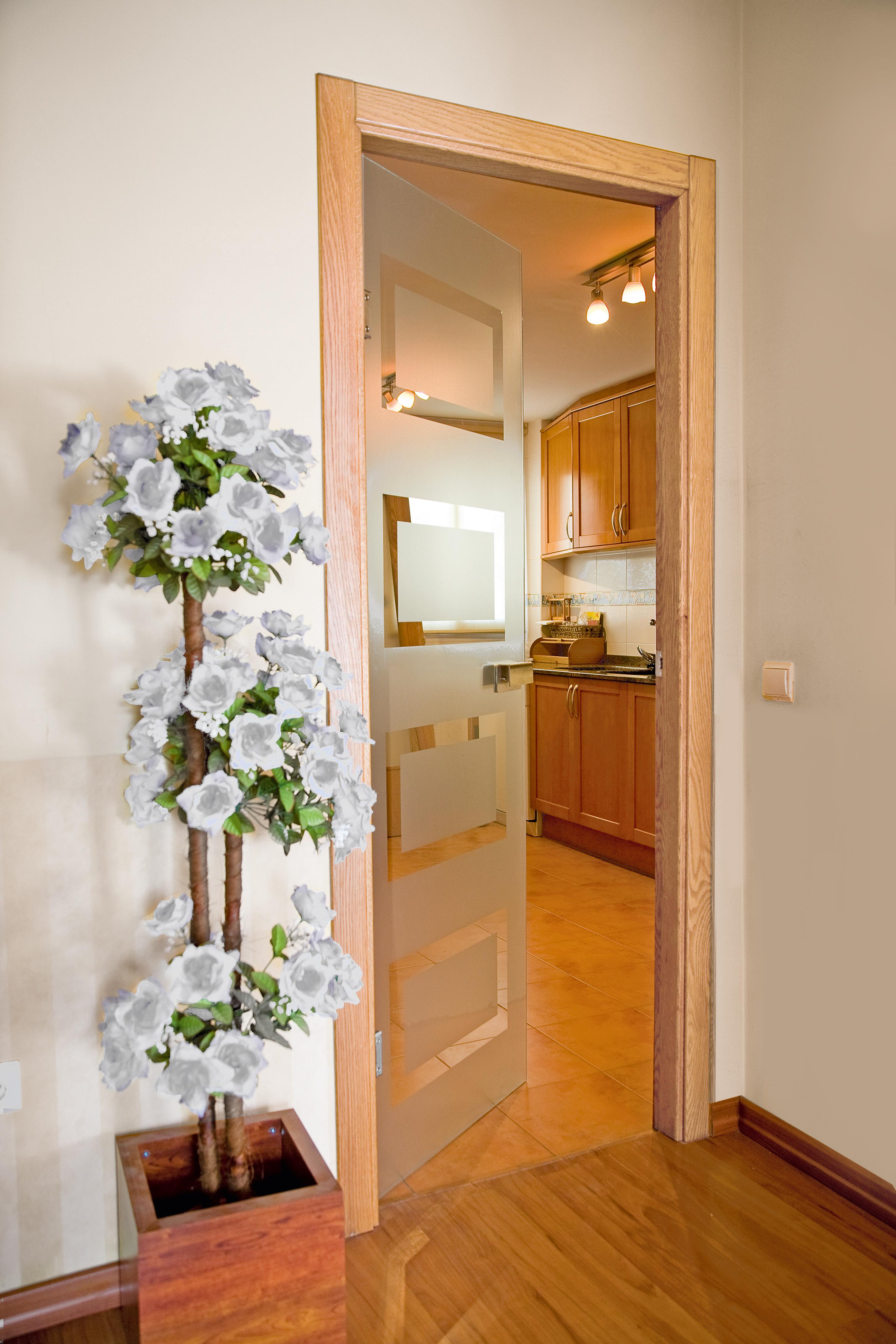 Puertas de interior modernas y decorativas for Puerta de cristal abatible