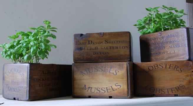 y tambin quedan muy bien en la terraza o el balcn como jardineras para pequeas macetas vivan las cajas