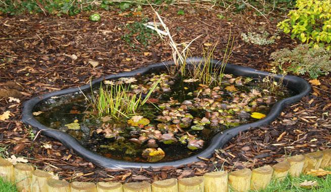 Estanques para el jard n y la terraza for Imagenes de estanques para ninos