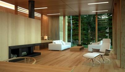 Casas minimalistas10