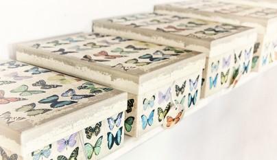 muy mucho mariposas cajas cuadrada