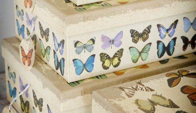muy mucho mariposas cajas cuadradas 4