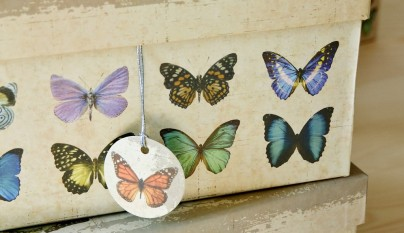 muy mucho mariposas cajas cuadradas