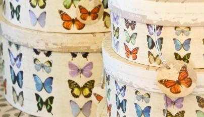 muy mucho mariposas cajas redondas 2