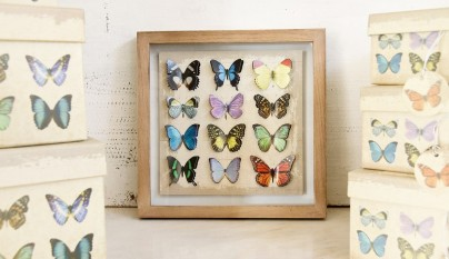 muy mucho mariposas cuadro 3