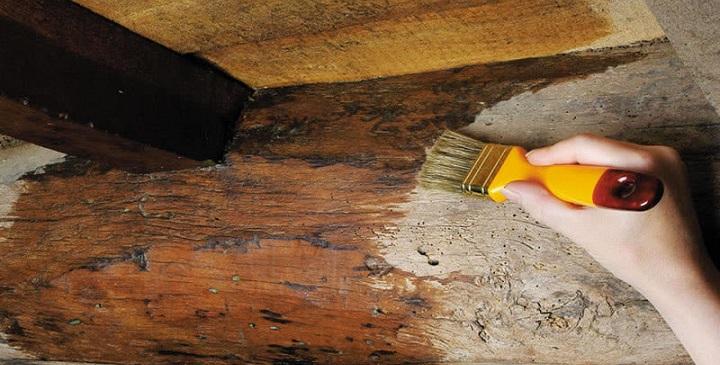 Qu tinte usar para te ir la madera - Aceite de linaza para madera ...