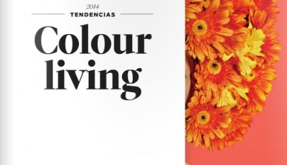colores tendencia 2014 Valentine1