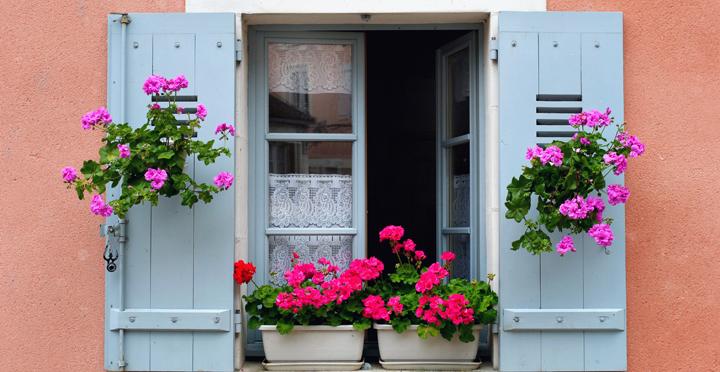 decoracion de ventana con flores