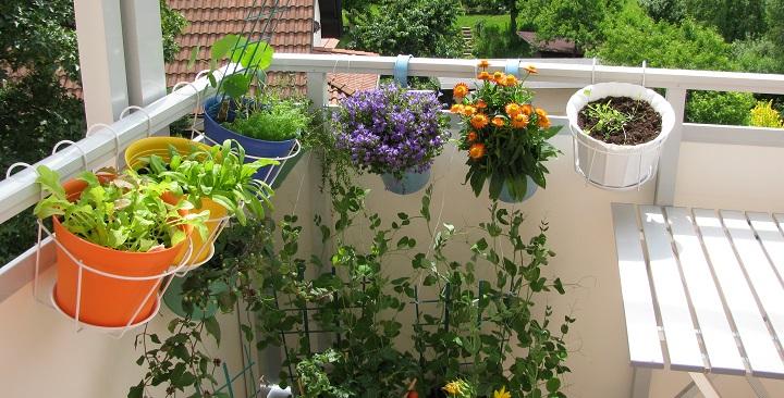 Jardines En Terrazas - Jardin En Terraza Pequena - Mimasku.com
