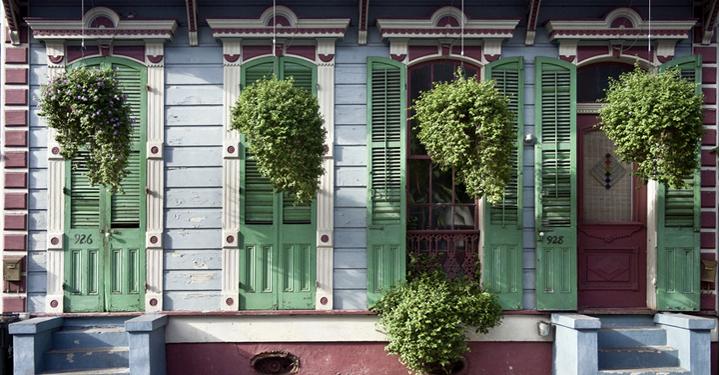 plantas colgantes en fachada de casa