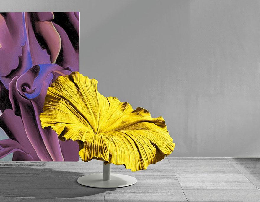 silla floracion