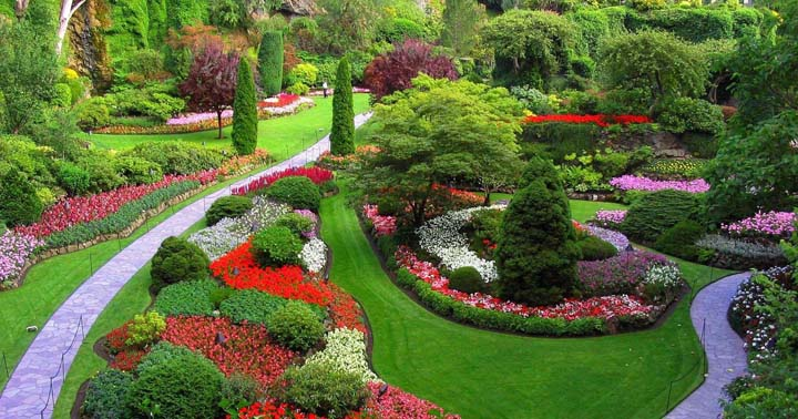 Fotos de jardines y terrazas