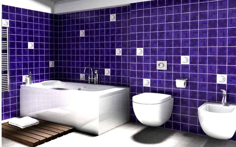 Azulejos Para Baño De Cuadritos:Banos De Azulejos Disenos