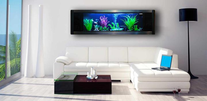 Adornos y complementos para decorar acuarios