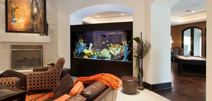 Adornos y complementos para decorar acuarios for Webs decoracion hogar