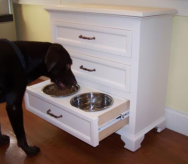 cajon con bols de comida para el perro