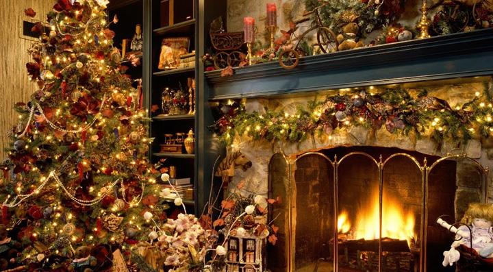 Árboles de Navidad naturales