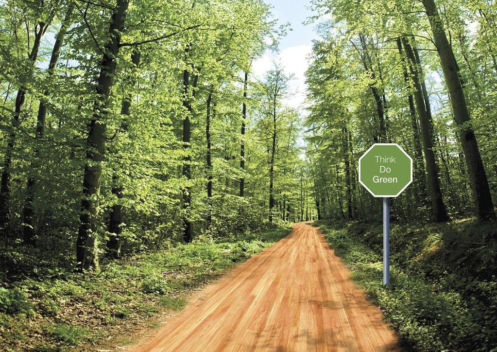 Bona road_01
