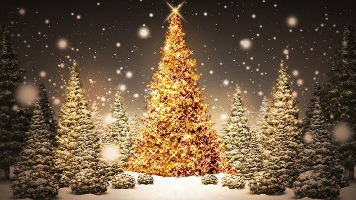 decoracion elegante del arbol de navidad