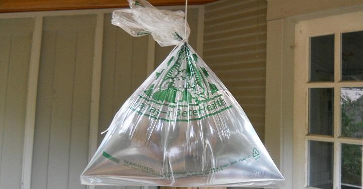 Remedios caseros para acabar con las moscas - Ahuyentar moscas exterior ...