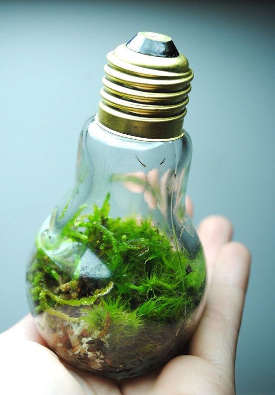 bombillas viejas recicladas 10