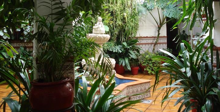 Jardin estilo andaluz3