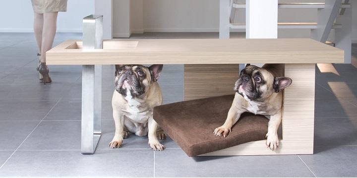 muebles perros6