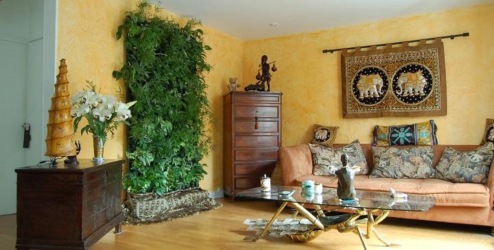 Plantas trepadoras para decorar - Enredaderas de interior ...