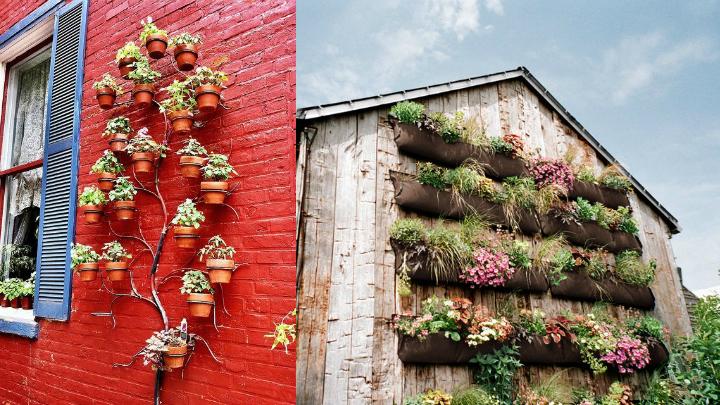 Jardines verticales para decorar tu casa for Jardines en macetas