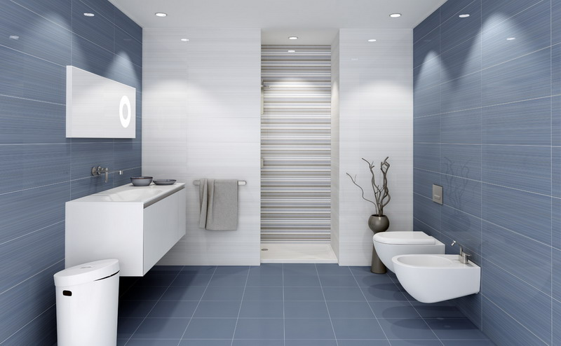 Bano azul blanco5 - Bano azulejo blanco ...